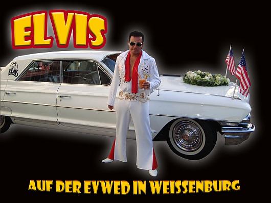 Elvis lebt auf der EvWed in Weissenburg